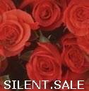 SILENT.SALE Versandhandel